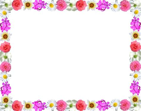 backdrop border design different colorful floral page border design hd sadiakomal