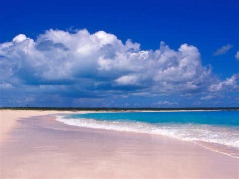 オールポスターズの グレッグ ジョンストン pink sand harbour island