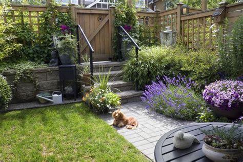 imagenes de jardines con animales dise 241 o de jard 237 n para perros barki news espa 241 ol