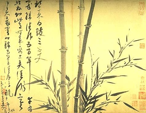 Drawing Of A Bamboo Tree by Growing Bamboo In A Garden Home Or Office Interior