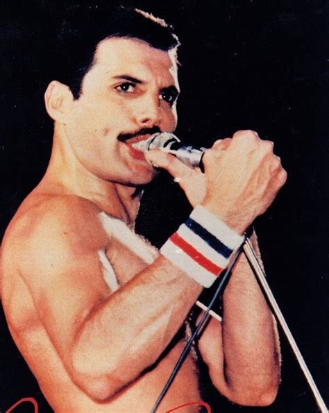 freddie mercury freddie freddie mercury photo 32455777 fanpop
