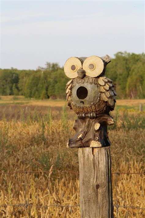 owl house 1000 ideas about owl house on pinterest owl box bird house plans and birdhouses