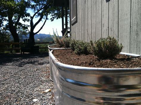 Galvanized Stock Tank Planter by Vignette Design Galvanized Water Trough Raised Bed Garden