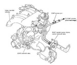 2001 nissan xterra wiring diagram 2006 nissan quest wiring diagram elsavadorla