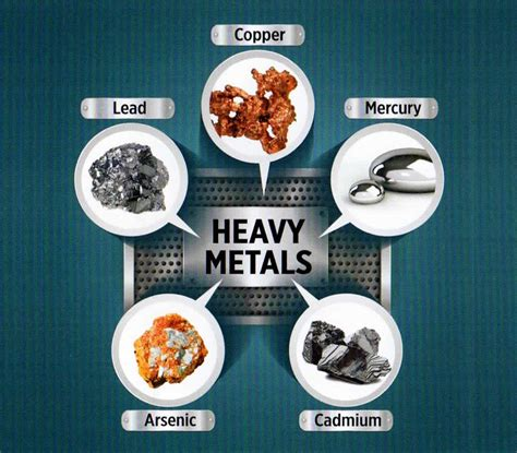 Detox Heavy Metals by Insys Genetik Indonesia Igi