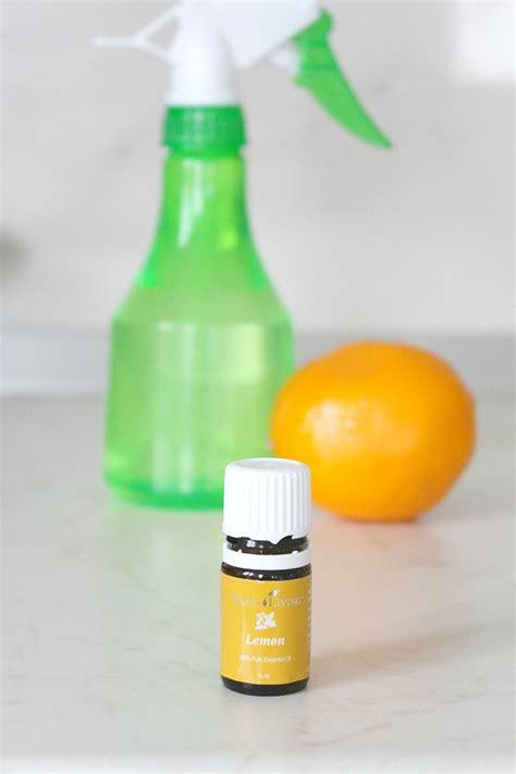 natural bathroom disinfectant homemade lemon disinfectant for home