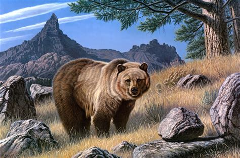 animal painting free bears brown painting animals wallpaper