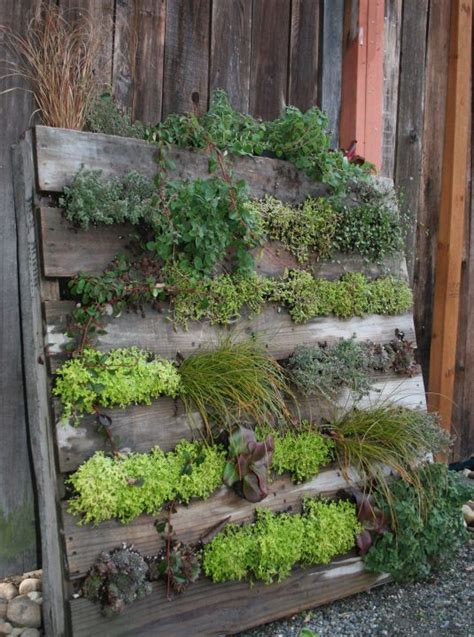 the easiest vertical garden made with pallets see how to