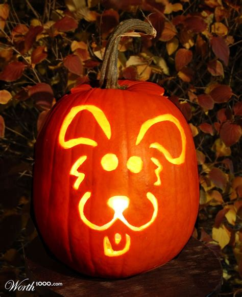 puppy pumpkin carving o lantern pictures amazing cool o lantern photographs check out these