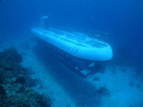 catamaran hundido en cozumel cozumel atlantis submarine excursion