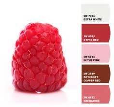 raspberry bathroom paint 1000 images about color palettes on pinterest color palettes aqua and raspberries