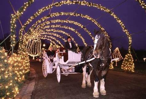 Tilles Park St Louis Christmas Lights Carriage Ride