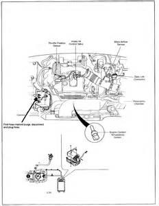 Kia Sportage Fuel Filter Location Kia Sportage Gas Tank Location Get Free Image About