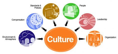 design management and cultures human resource management organizational culture