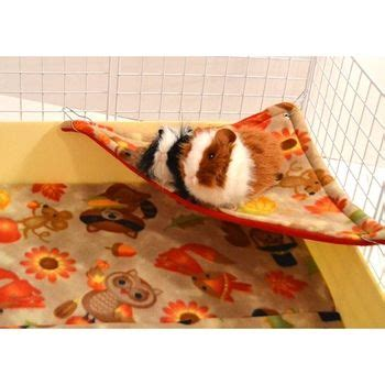 best guinea pig bedding 25 best ideas about guinea pig accessories on pinterest