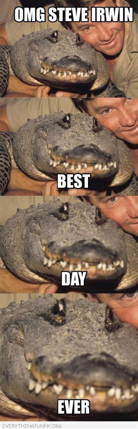 Crocodile Meme - 18 best steve irwin memes images on pinterest steve