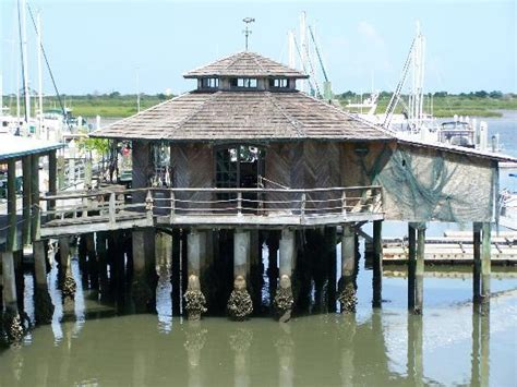 conch house reggae sunday reggae sunday s happen right here picture of the conch house restaurant saint