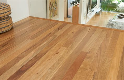 spotted gum 90 room floating floors pty ltd