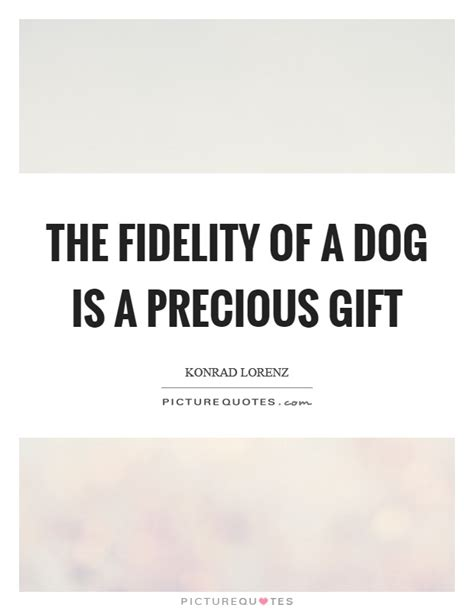 the lincoln chronicles puppy wisdom for happy living books the fidelity of a is a precious gift picture quotes
