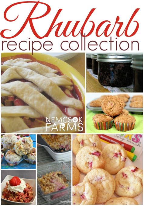 best rhubarb recipes the best rhubarb recipes collection nemcsok farms