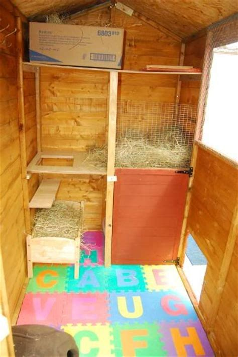 Rabbit Shed Ideas by 25 Best Ideas About Rabbit Shed On Rabbit Ideas Cages For Rabbits And Bunny Hutch