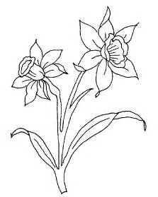 daffodils drawing free download clip art free clip art clipart library