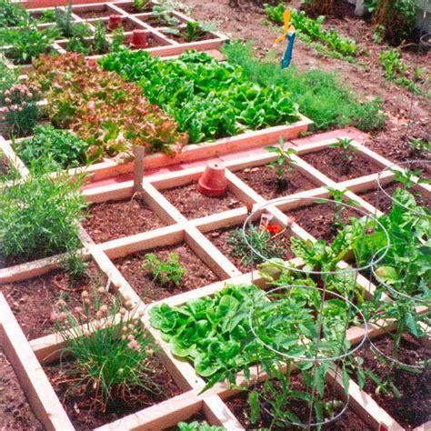 small vegetable garden ideas  creative mom