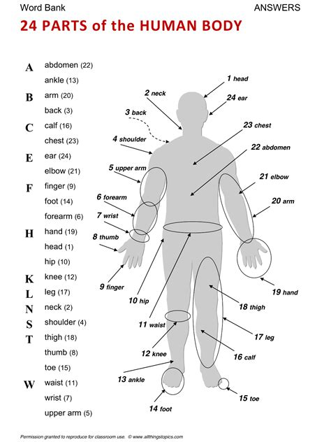 0007499663 vocabulary and grammar for the body english learning english vocabulary esl english