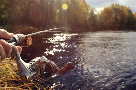 Alat Pancing Ikan Air Tawar pertimbangkan hal ini saat memilih joran alat pancing