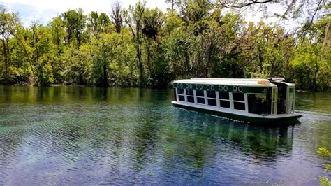 glass bottom boat tours kentucky silver springs state park wild monkeys and glass bottom