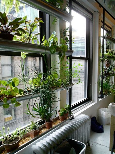indoor window garden 25 best ideas about indoor window garden on pinterest