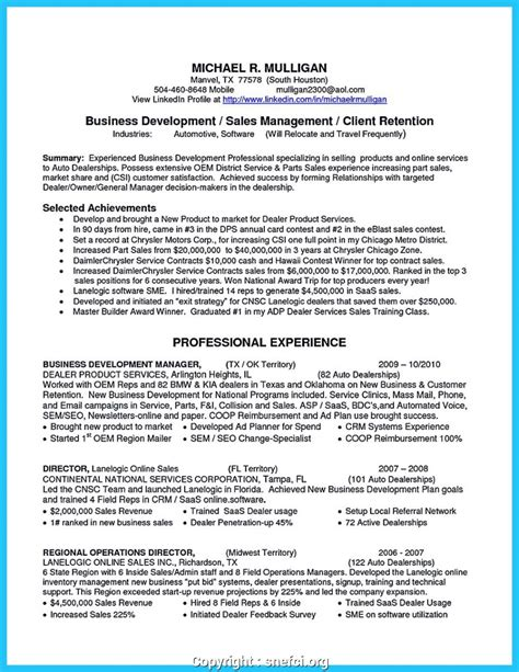 Business Development Manager Resume Summary by Downloadable Business Development Manager Profile Summary