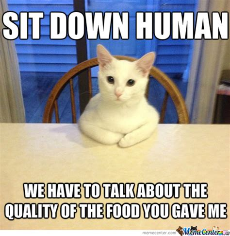 Cat Meme - hungry cat memes image memes at relatably com