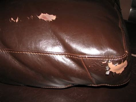 Flaking Leather by The Peeling Leather Of Four Sofa Yelp