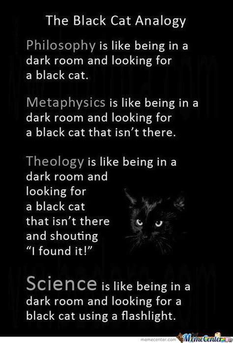 Black Cat Memes - black cat memes best collection of funny black cat pictures