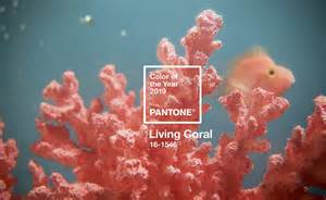 color of coral what to about the 2019 pantone color of the year