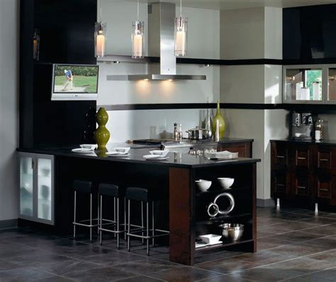 Type Of Kitchen Cabinets contemporary kitchen cabinets in espresso finish kitchen