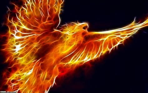 fire animal wallpaper wallpapers hd desktop