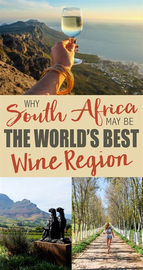 best wine regions why south africa may be the world s best wine region the