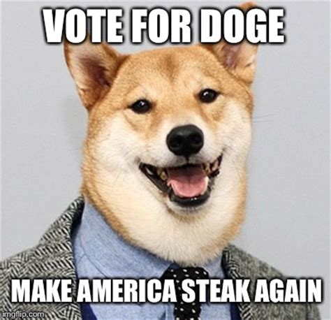Make Doge Meme - he s for the carnivore majority imgflip