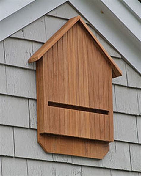buy bat house teak bat house