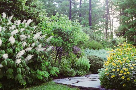 Perennial Garden Perennial Garden Path Near Woodstock Ny Gayle Burbank