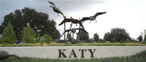 boarding katy tx boarding katy tx professional in home pet sitting and walking