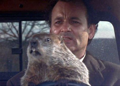 bill murray groundhog day trailer 14 things you never knew about groundhog day moviefone
