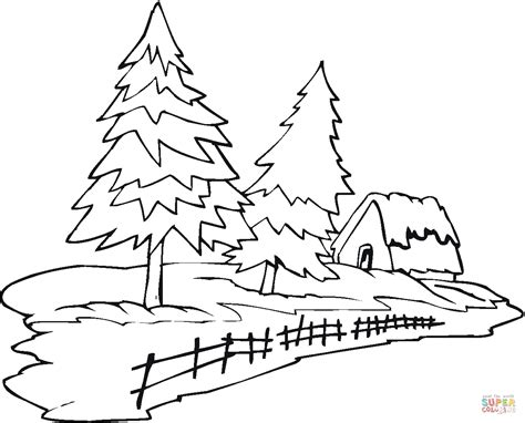 rainforest tree coloring page rain forest trees coloring page coloring home