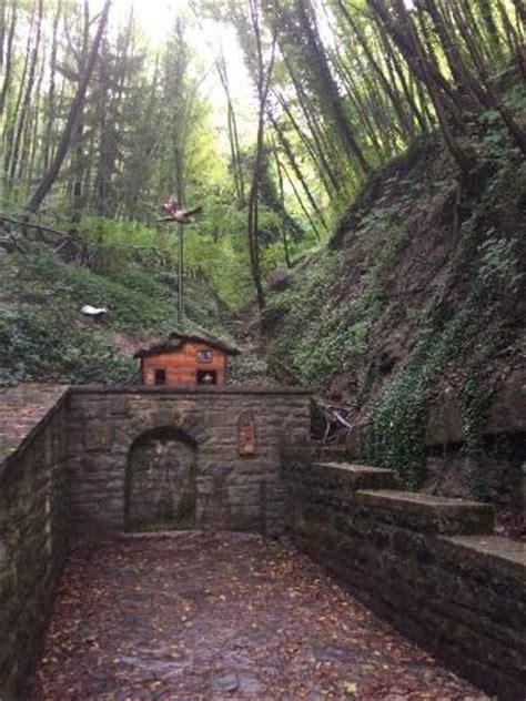 percorso gnomi bagno di romagna sentiero degli gnomi foto di sentiero degli gnomi bagno