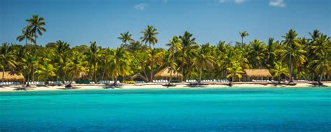 cheap non stop flights from manchester to punta cana for only 163 259