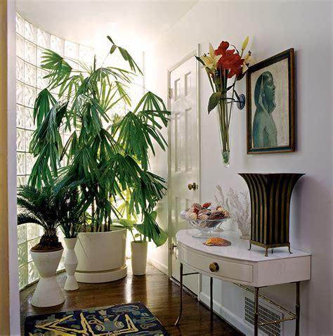 modern houseplants mid century modern house plants numberedtype