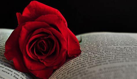 libro red rosa a graphic la leyenda de san jorge 23 de abril d 205 a internacional del libro y la rosa