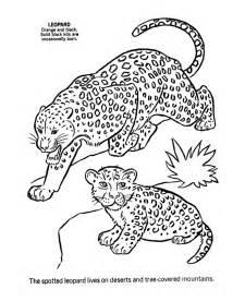 coloring pages jaguar animal jaguar pictures to color coloring home